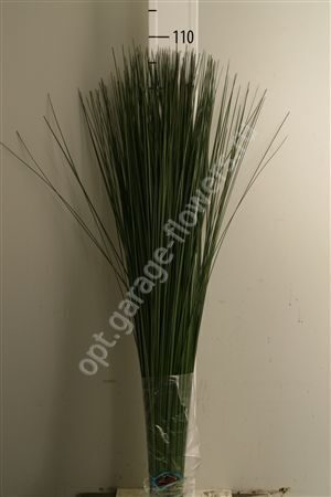 Dec Steelgrass X10